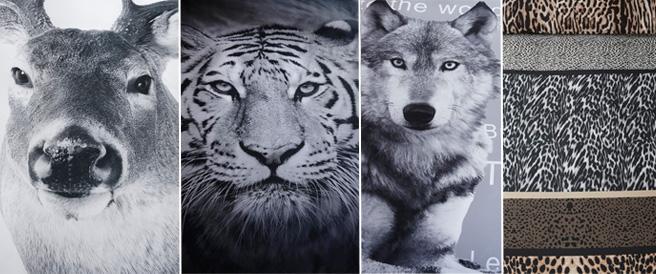 Tekstfoto-dieren-DBO.jpg
