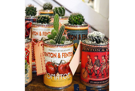 Set van 6, 9 of 12 mini cactussen nu al vanaf €19,90 | Populaire & super trendy cactussen mix