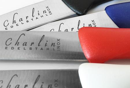 Charlin RVS inox snij- en schilmesjes 10 stuks nu voor slechts €6,95 | Topkwaliteit voor een spotprijs!