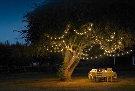 Solar LED buitenlampen nu slechts €13,95 | Geef je tuin extra sfeer!