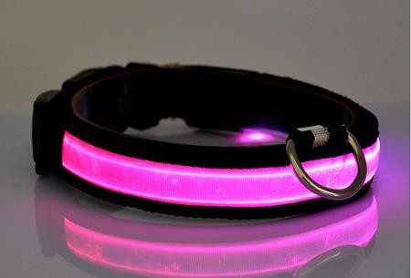 Led hondenhalsband Maat XL - Roze