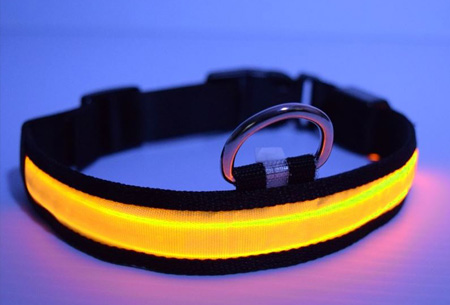 Led hondenhalsband   Lichtgevende halsband voor je hond - extra veiligheid in het donker geel