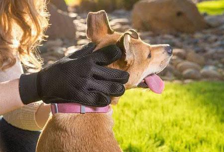 Borstelhandschoen voor huisdieren | Voor een goede vachtverzorging voor o.a. honden en katten