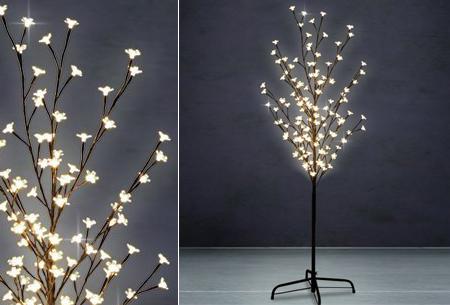 Dagaanbieding: LED boom nu met 53% korting