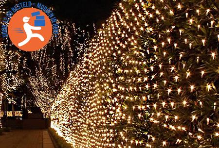 LED lichtnet