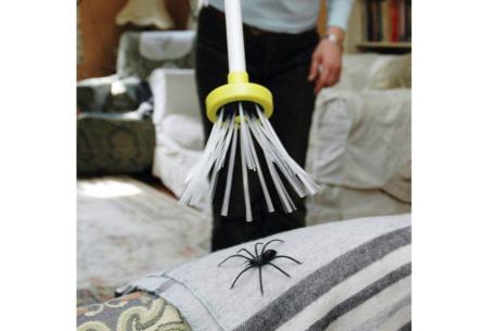 Spider Catcher | Doeltreffend insectenvangen zonder te doden