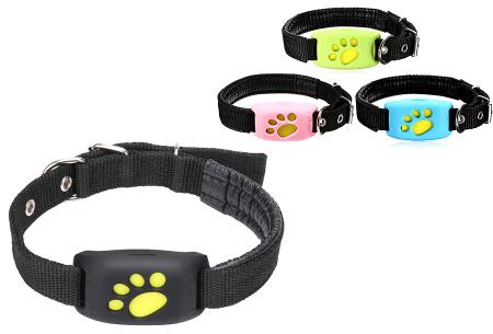 GPS tracker voor kat en hond | Verlies je geliefde huisdier nooit uit het oog