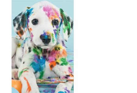 Diamond painting - dieren versie | De nieuwste en ontspannende doe-het-zelf trend! #6 dalmatiër