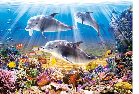 Diamond painting - dieren versie | De nieuwste en ontspannende doe-het-zelf trend! #9 dolfijn