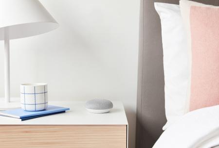 Google home mini | De assistant mini speaker voor bij jou thuis