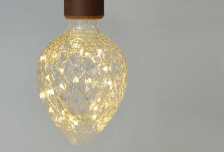 Fairy LED lamp in 9 modellen | Feestelijke lichtbronnen met wirwar aan lichtjes Aardbei