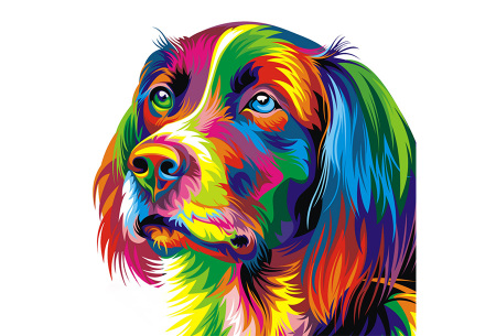 Diamond painting arty editie | Keuze uit 7 uitvoeringen in 3 formaten #3 hond 2