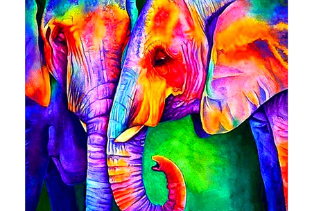 Diamond painting arty editie | Keuze uit 7 uitvoeringen in 3 formaten #7 olifanten