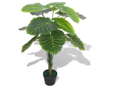 Realistische kunstplanten | Fleur jouw huis op! - incl. gratis verzending taro - 70 cm