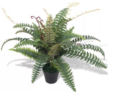 Realistische kunstplanten | Fleur jouw huis op! - incl. gratis verzending varen - 60 cm