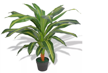 Realistische kunstplanten | Fleur jouw huis op! - incl. gratis verzending dracena - 90 cm