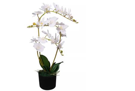 Realistische kunstplanten | Fleur jouw huis op! - incl. gratis verzending orchidee - 65 cm