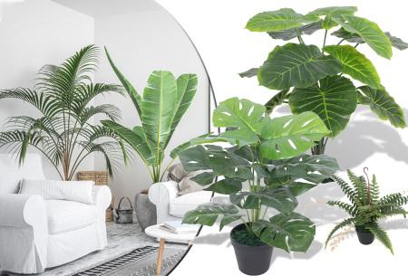 Realistische kunstplanten | Fleur jouw huis op! - incl. gratis verzending