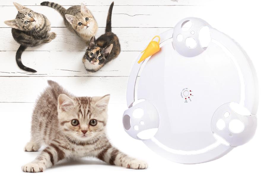 Elektronisch kattenspeeltje in de aanbieding <br/>EUR 29.99 <br/> <a href='https://tc.tradetracker.net/?c=24550&m=1018120&a=321771&u=https%3A%2F%2Fwww.vouchervandaag.nl%2Felektronisch-kattenspeeltje' target='_blank'>Bekijk de Deal</a>