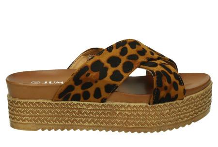 Criss Cross sandalen voor dames   Trendy slippers met gekruiste bandjes en plateauzool luipaardprint