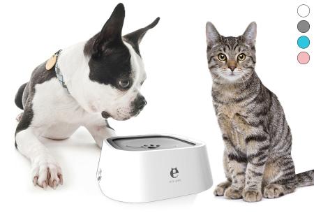 Anti-spat drinkbak voor honden en katten met korting in de sale