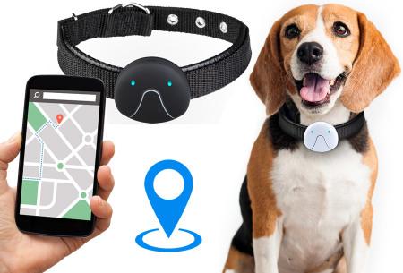 Petonaut F9 GPS tracker voor hond en kat - nu in de aanbieding!