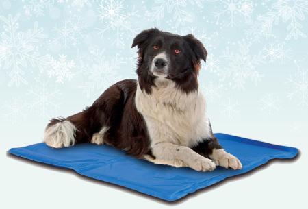 Koelmat voor huisdieren | Heerlijk verkoelende mat voor je hond of kat