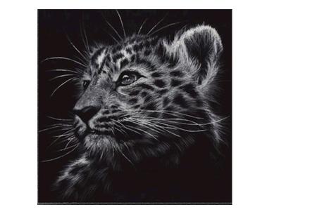 Diamond painting zwart-wit schilderij - in diverse katachtigen | Ontspannen knutselen met deze creatieve bezigheid! #6