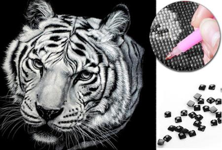 Diamond painting zwart-wit schilderij - in diverse katachtigen | Ontspannen knutselen met deze creatieve bezigheid!