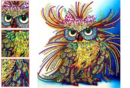 Diamond painting schilderij | Half schilderij, halve Diamond painting voor een bijzonder 3D effect! #7