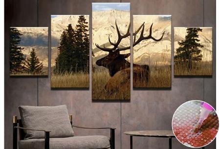 5-luik Diamond painting | Creëer je eigen kunstwerk voor aan de muur!