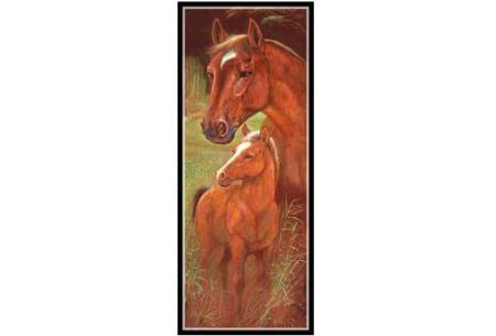 Sepia Diamond painting schilderijen | Keuze uit 9 bijzondere dieren #Paard