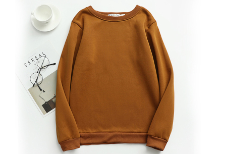 Basic dames sweater   Ideale basic trui met fleece - in 19 kleuren! Bruin