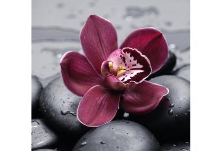 Diamond painting bloemen | Creëer zelf de allermooiste bloemen schilderijen #1