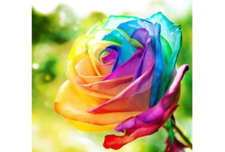 Diamond painting bloemen | Creëer zelf de allermooiste bloemen schilderijen #2