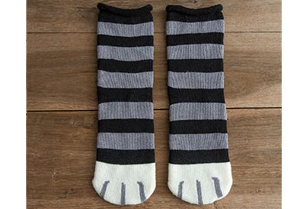 Katten sokken #5