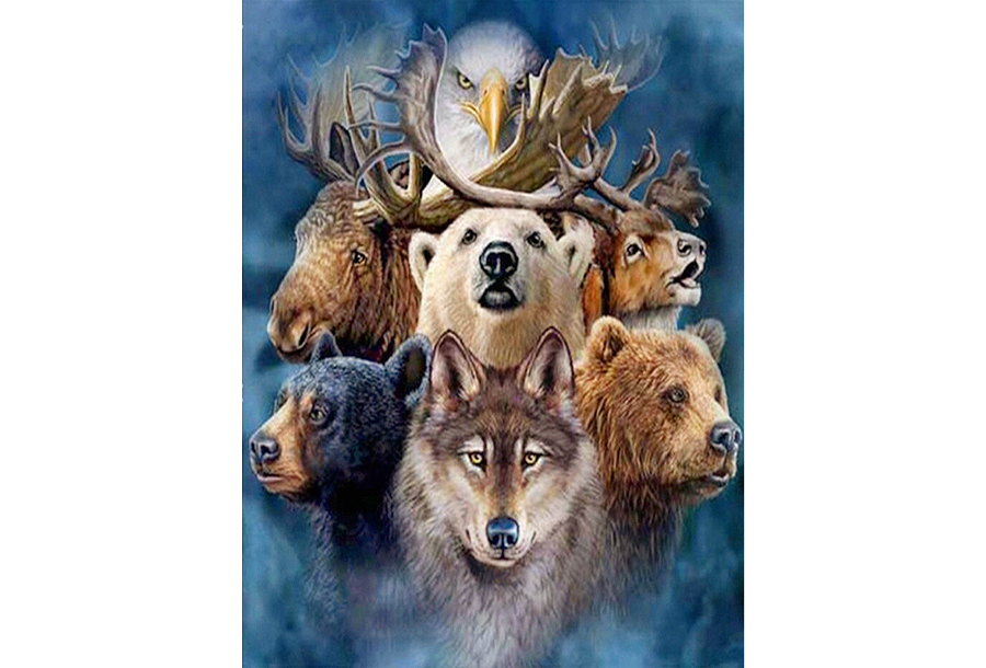 Diamond painting Wildlife schilderijen #5 - 45 x 60 cm