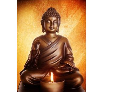 Diamond painting boeddha | Compleet pakket - kies uit 15 uitvoeringen! #7