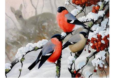Diamond painting vogels | Creëer zelf prachtige schilderijen met kleurrijke vogelsoorten! #3