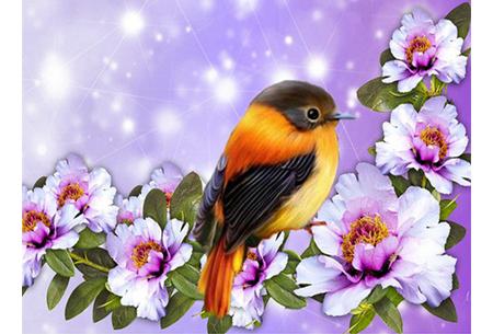Diamond painting vogels | Creëer zelf prachtige schilderijen met kleurrijke vogelsoorten! #7