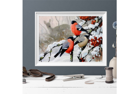 Diamond painting vogels | Creëer zelf prachtige schilderijen met kleurrijke vogelsoorten!