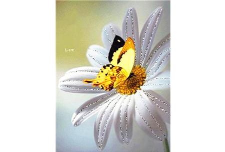 Diamond painting vlinders | Kies uit 14 prachtige schilderijen - in 5 formaten  #3