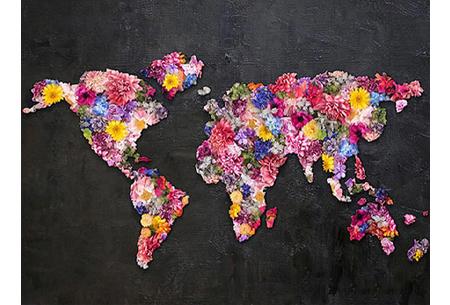 Diamond painting wereld | Schitterende schilderijen van de complete wereldkaart! #8