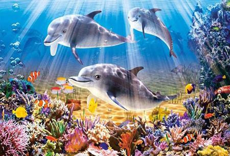 Diamond painting dolfijnen   Adembenemende schilderijen om zelf te maken!  #2