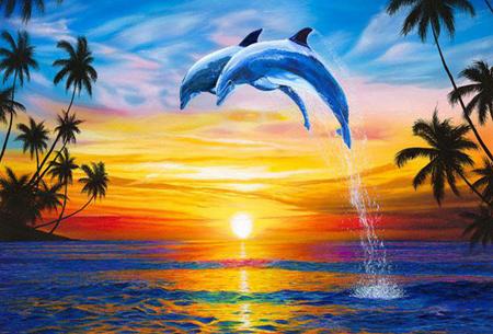 Diamond painting dolfijnen   Adembenemende schilderijen om zelf te maken!  #10