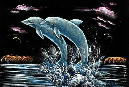 Diamond painting dolfijnen   Adembenemende schilderijen om zelf te maken!  #12