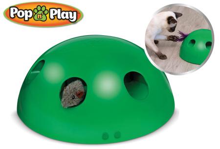 Pop n' Play kattenspeeltje   Het leukste speelgoed voor katten