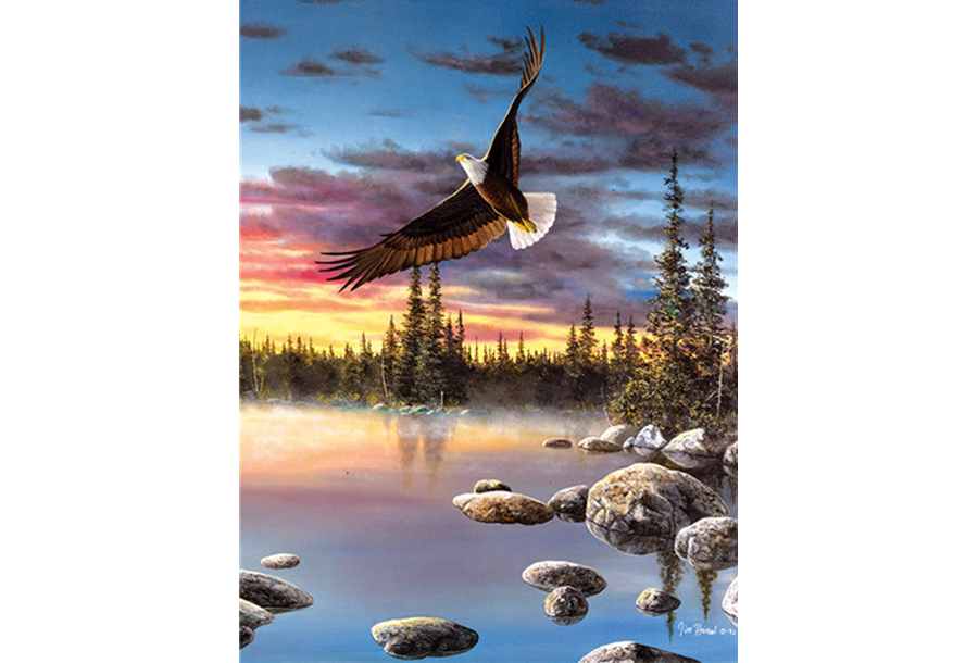 Diamond painting natuur #8 Arend - 40 x 50 cm