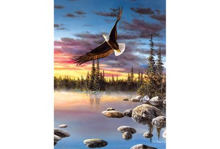 Diamond painting natuur | Knutselen voor volwassenen! Kies uit 14 afbeeldingen #8 Arend
