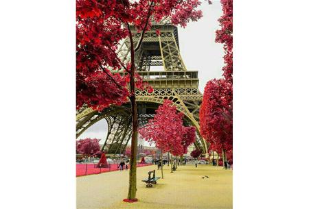 Diamond painting natuur | Knutselen voor volwassenen! Kies uit 14 afbeeldingen #9 Eiffeltoren achter de bomen